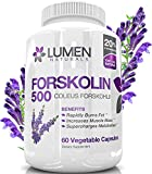 Pure-Forskolin-Extract-for-Weight-Loss-Supplement-500mg-2X-Strength-20-Standardized-Get-Insta-Belly-Melt-Research-Verified-Coleus-Forskohlii-Shown-to-Rapidly-Burn-Fat-Increase-Metabolism