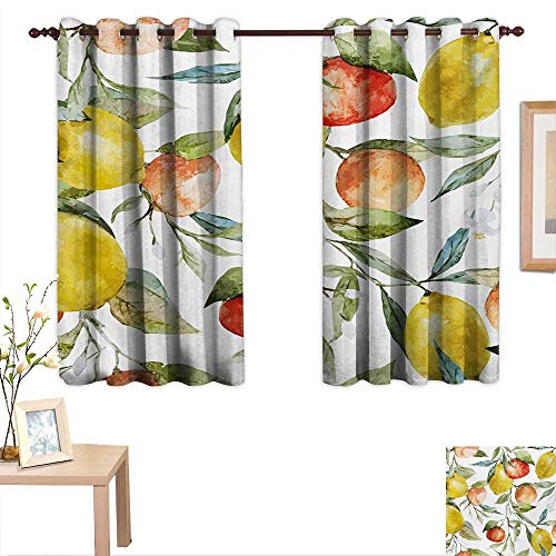 "Nature Customized Curtains Lemon and Orange Clementine Tree Branches Fruit Yummy Winter Season Vitamin Design 55""x 45"",Suitable for Bedroom Living Room Study, etc."