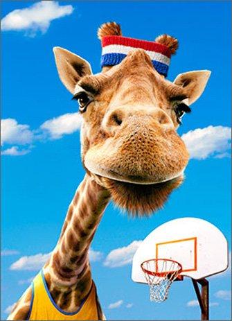 Giraffe Baller Funny Fathers Card