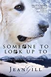 Bargain eBook - Someone To Look Up To