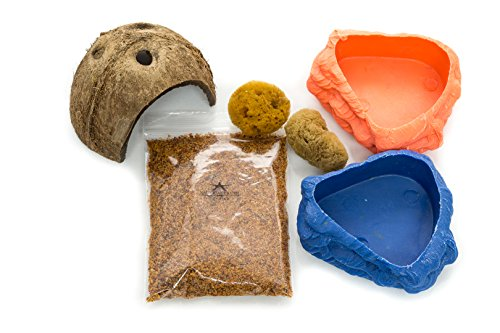 Hermit Crab Variety Bites (Habitat Kit for Hermit Crabs | Hermit Crab Coco Hut and Acessory Kit | Coco Hut | Sponges (2) | Plastic Pond for Water or Food|)