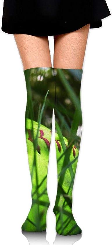 High Elasticity Girl Cotton Knee High Socks Uniform Grass Softball Women Tube Socks