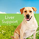 Pet Wellbeing - Milk Thistle For Dogs - Natural