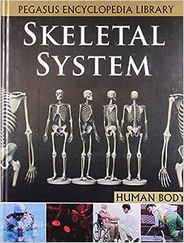 SKELETAL SYSTEMHUMAN BODY
