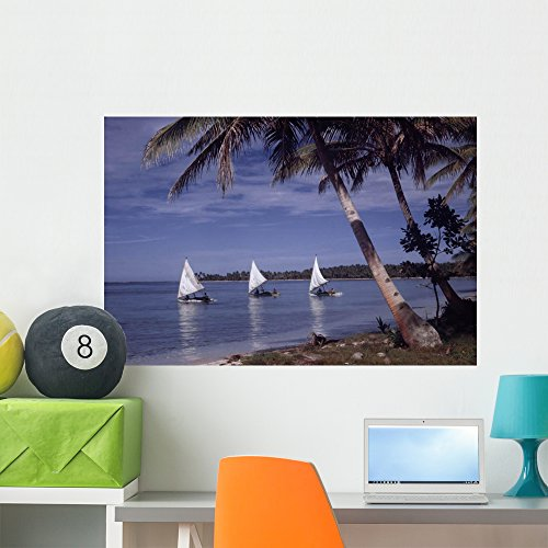 ous Atolls Wall Mural Wallmonkeys Peel and Stick Graphic (36 in W x 24 in H) WM309720 (Islander Way)
