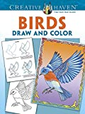 Creative Haven Birds Draw and Color, Marty Noble, 0486793966