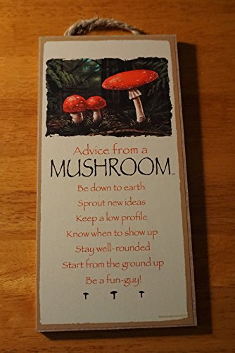 Advice From A Mushroom - Be A Fun-Guy - Rustic Lodge Cabin Sign Home Decor