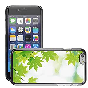 Super Stellar Slim PC Hard Case Cover Skin Armor Shell Protection // M00048999 24 branch aero with green leaves // Apple iPhone 6 4.7