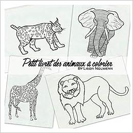 Le Petit Livret Des Animaux A Colorier Amazon Fr Nolwenn Lison Livres