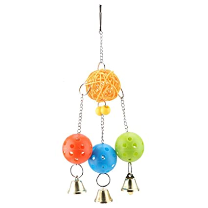 Amazon com : HEEPDD Parrot Chewing Toy, Colorful Hanging Swing