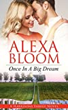 Free eBook - Once In A Big Dream