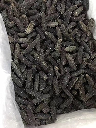 Tomox Dalian sea cucumber dry cargo 250g wild dried sea cucumber GanTomox Tang origin pure light infiltration sea cucumber by Tomox