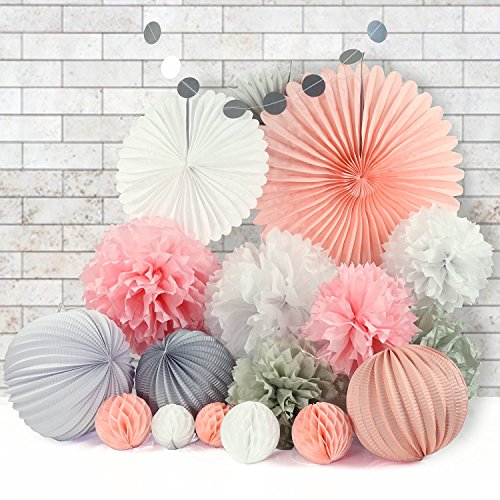 Grandekor 21 Pcs Tissue Paper Flowers Pom Poms Set - Paper Lanterns Honeycomb Balls and Paper Fans for Birthday Party Wedding Festival Christmas Decorations by Grandekor