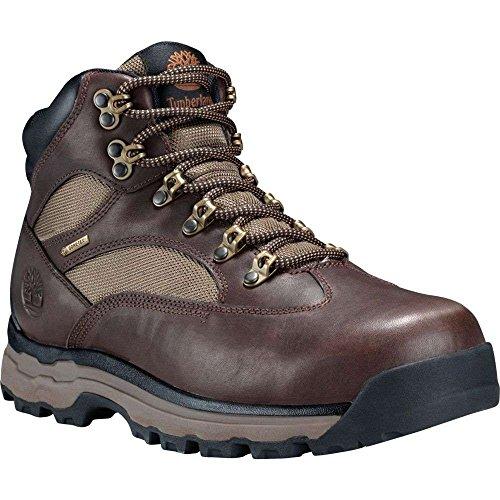 受け入れ花嫁速報(ティンバーランド) Timberland メンズ ハイキング?登山 シューズ?靴 Timberland Chocorua Trail 2.0 Mid GORE-TEX Hiking Boots [並行輸入品]