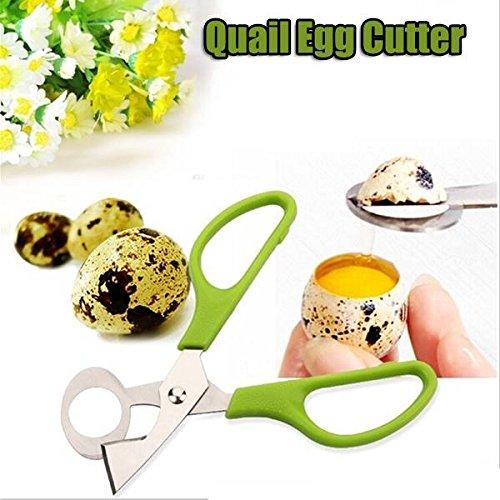 Bargain World Pigeon Quail Egg Scissors Egg Cutter Egg Opener Kitchen Gadget Bargain World Online