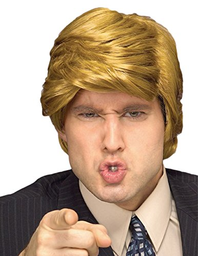 Sunset Intimates Rich Guy Wig, (Provocative Mens Halloween Costumes)