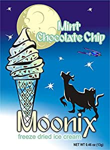 Moonix Freeze Dried Ice Cream (Mint Chocolate Chip)