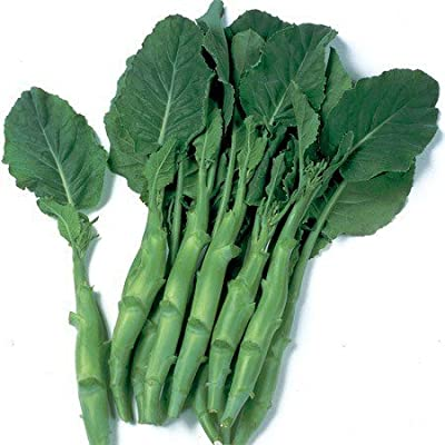 Asian Heirloom (kailan) Chinese Broccoli Seeds by Stonysoil Seed Company