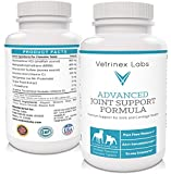 Vet Approved Joint Supplement for Dogs - 120 Extra Strength Glucosamine Chewable Tablets with Chondroitin and MSM - Effective. Easy to Feed - Best for Large Dogs - Arthritis & Hip Care Chews