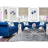 Furniture of America 2-Piece Athena Glamorous Sofa Set, Royal Blue