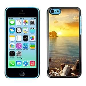EJOY---Cubierta de la caja de protección la piel dura para el / iPhone 5C / --Oro Sung Mar