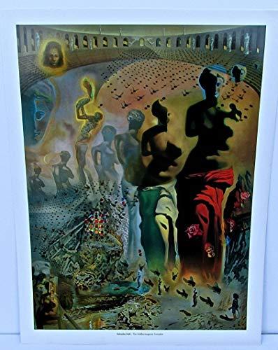 (Salvador Dali Poster The Hallucinogenic Toreador 15x12 Offset Lithograph)