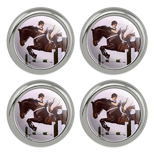 Horse Open Stadium Show Jumping Metal Craft Sewing Novelty Buttons - Set of 4 ()