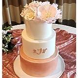 Sweet Sticks Edible Art Decorative Cake Paint 0.5