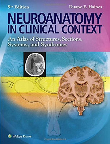 Pdf Medical Books Neuroanatomy in Clinical Context: An Atlas of Structures, Sections, Systems, and Syndromes (Neuroanatomy: An Atlas of Strutures, Sections, and Systems ()