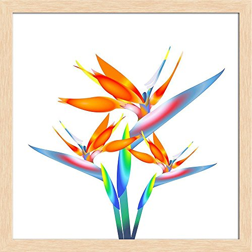ArtzFolio Bird of Paradise Flower 2 Canvas Painting Natural Brown Wood Frame 16 x ()