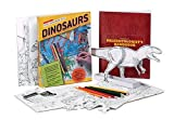 Dinosaurs, Pamela Liflander, 0762415916
