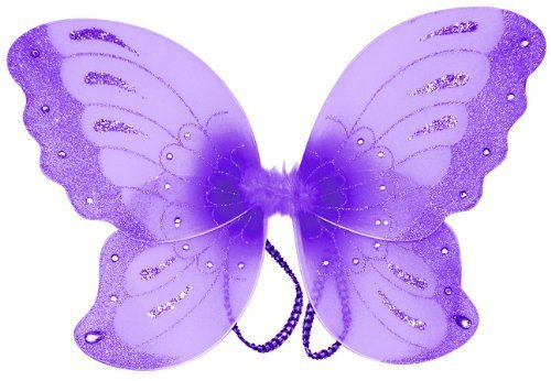 Jewel Butterfly Fairy Wings (21