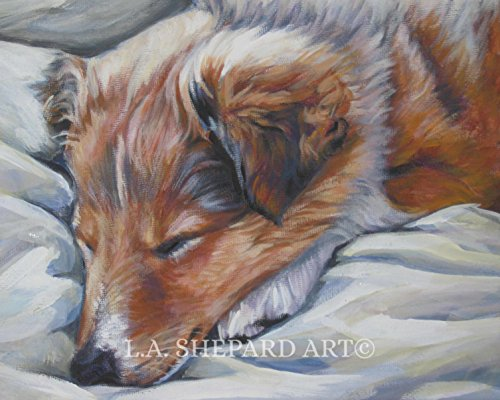A Shetland Sheepdog dog art portrait print of an LA Shepard sheltie painting 8x10