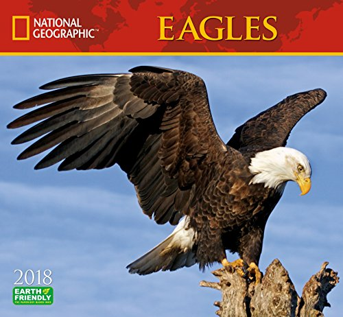 National Geographic Eagles 2018 Wall Calendar
