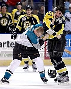 Adam McQuaid Providence Bruins fight photo 8x10 976 Boston Bruins