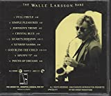 The Walle Larsson Band