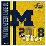 Michigan Wolverines 2018 Calendar