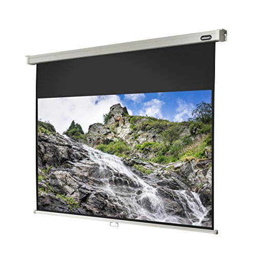 "celexon 136"" Manual Pull Down Projector Screen Manual Professional, 114 x 64 inches viewing area, 16:9 format, Gain 1.2 by Celexon"