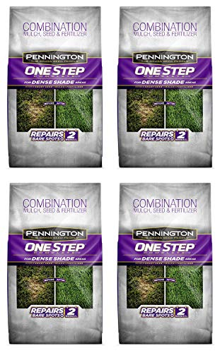 Pennington 100520284 One Step Complete Bare Spot Repair Grass Seed Mix for Dense Shade Areas, 8.3 lbs (Fоur Расk)