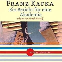 Ein Bericht für eine Akademie
