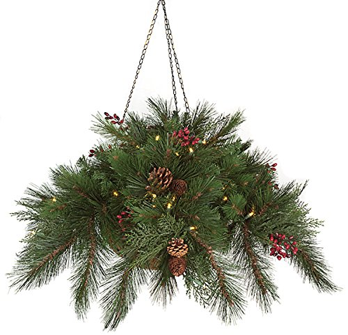 Autograph Foliages C-106178B 15 in. Hanging Basket44; Green by Autograph Foliages