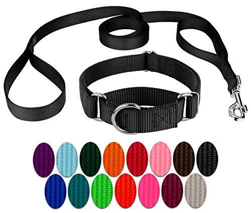 Country Brook Design | Martingale Nylon Dog Collar & Double Handle Leash-Black-L
