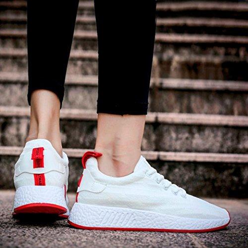 Neu Weiß Einfarbig Männer Schnürsenkel Promotionen 2018 Freizeitschuhe Top Mesh Sneaker Sportschuhe Superstar Sommer PLOT Low Atmungsaktiv wxFSUqZXZ