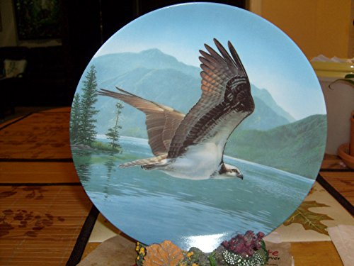 Osprey 7th Issue in the Majestic Birds Collection ()