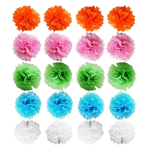 20 Piece Multicolor Tissue Pom Poms Balls Decorations by Belle Vous - 10
