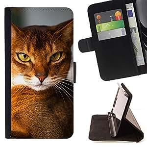 Momo Phone Case / Flip Funda de Cuero Case Cover - Raza Abisinio Chausie Orange Cat; - Sony Xperia M2