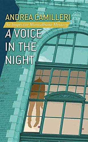 book cover of A Voice in the Night