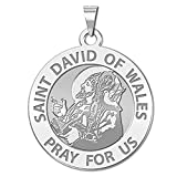 PicturesOnGold.com Saint David of Wales Religious Medal - 1 Inch Size of a Quarter -Solid 14K White Gold with Engraving