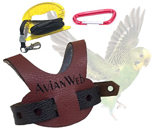 Avianweb EZ Budgie or Parrotlet Harness & 6 Ft Leash (Wine/Black