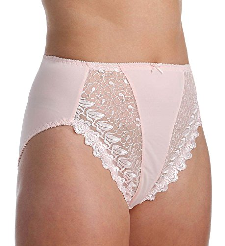 Embroidered Nylon Briefs - VALMONT, INC Women's Valmont Embroidered Lace and Satin Hi-Cut Brief Panty, Light Pink, 10